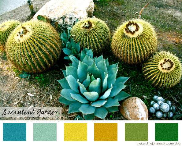 color_palette_cactus_illustration_yellow_green_colorful